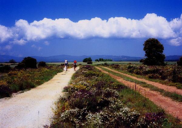 「サンチャゴへの道」 今年訪れましたイベリア半島北部の巡礼の道で撮りま... ▼巡礼の道サンティ